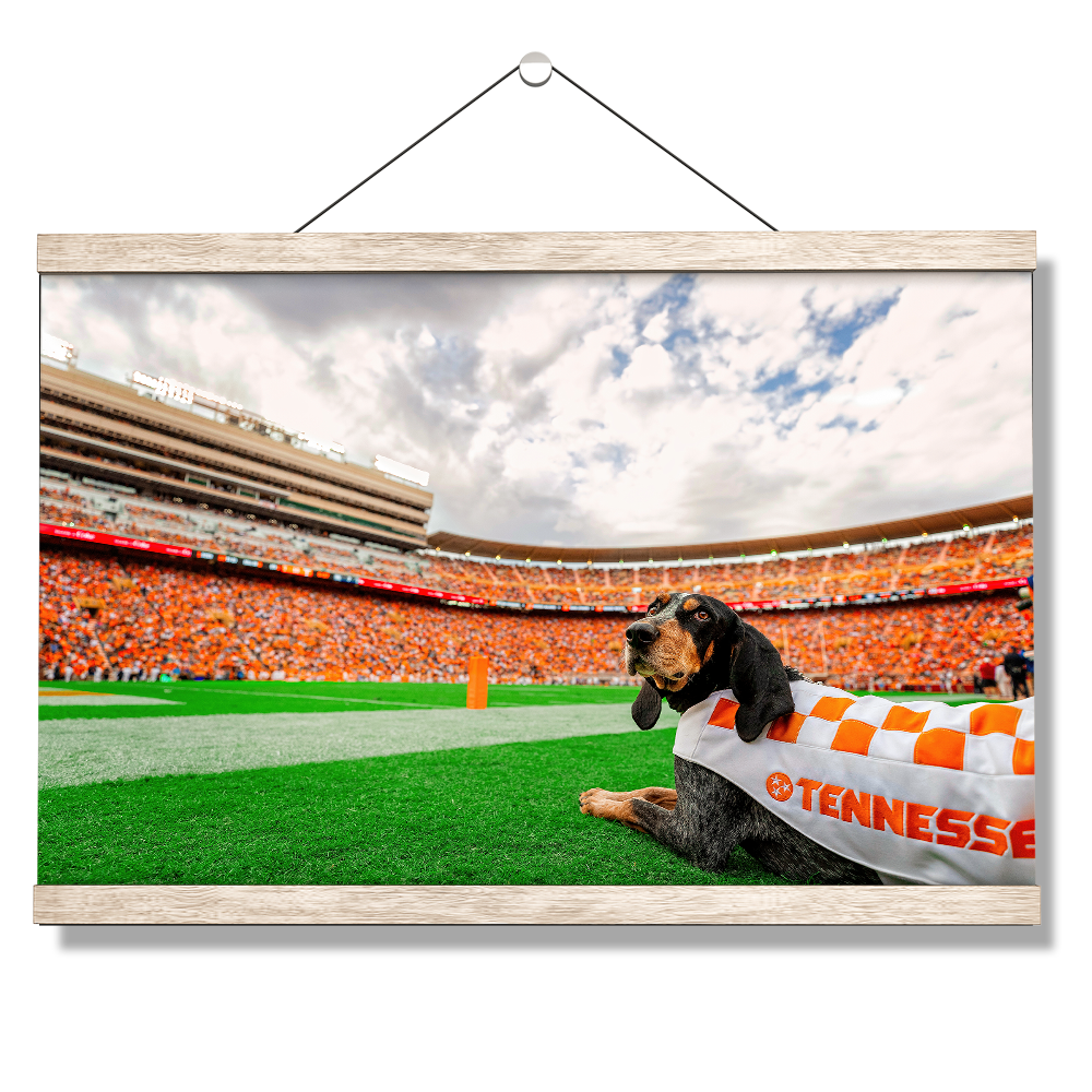 Tennessee Volunteers - Smokey's Tennessee - College Wall Art #Canvas