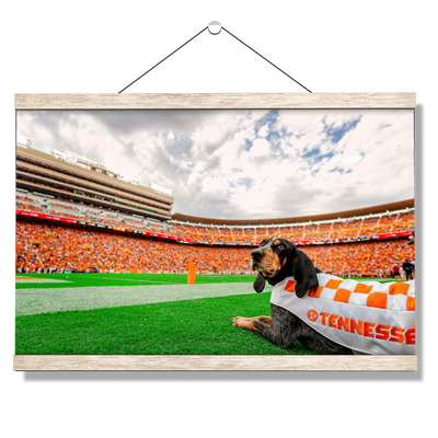 Tennessee Volunteers - Smokey's Tennessee - College Wall Art #Hanging Canvas