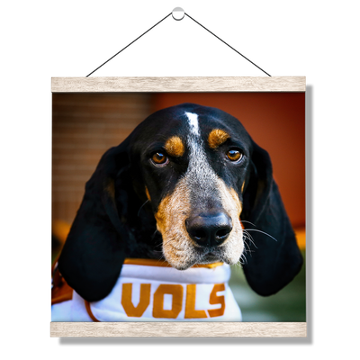 Tennessee Volunteers - TN Smokey Vols - College Wall Art #Hanging Canvas