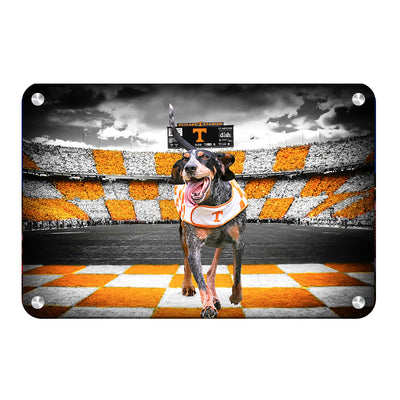 Tennessee Volunteers - Smokey's Backyard - College Wall Art #Metal