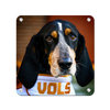 Tennessee Volunteers - TN Smokey Vols - College Wall Art #Metal