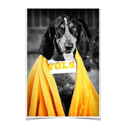 Tennessee Volunteers - Jedi Smokey - College Wall Art #Poster