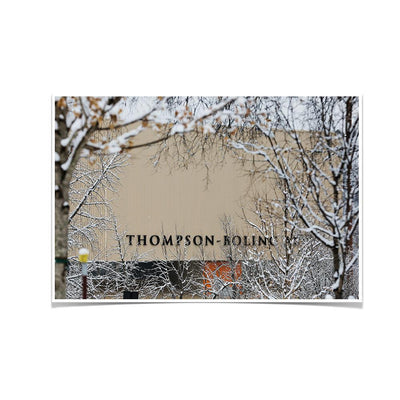 Tennessee Volunteers - Snowy Thompson-Boling - College Wall Art #Poster