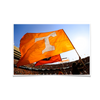 Tennessee Volunteers - T Flags - College Wall Art #Poster