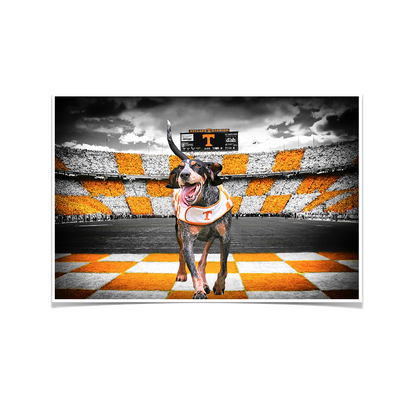 Tennessee Volunteers - Smokey's Backyard - College Wall Art #Poster