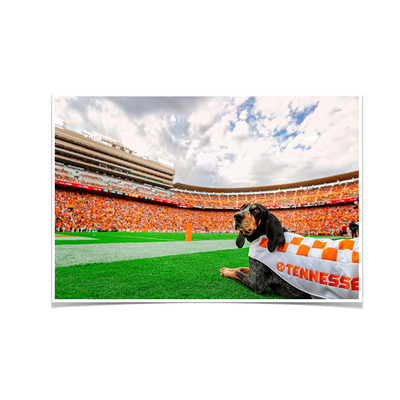 Tennessee Volunteers - Smokey's Tennessee - College Wall Art #Poster