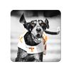 Tennessee Volunteers - Smokey TD - College Wall Art #PVC