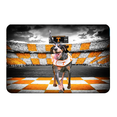 Tennessee Volunteers - Smokey's Backyard - College Wall Art #PVC