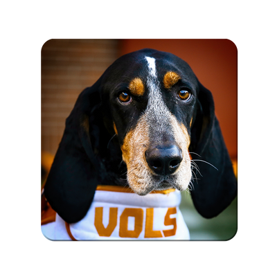 Tennessee Volunteers - TN Smokey Vols - College Wall Art #PVC