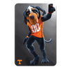 Tennessee Volunteers - Smokey - College Wall Art #PVC