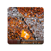 Tennessee Volunteers - Tradition - College Wall Art #PVC