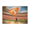 Tennessee Volunteers - Volunteer - College Wall Art #Wood