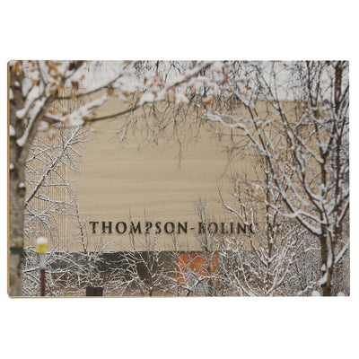 Tennessee Volunteers - Snowy Thompson-Boling - College Wall Art #Wood