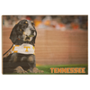 Tennessee Volunteers - Smokey - College Wall Art #Wood