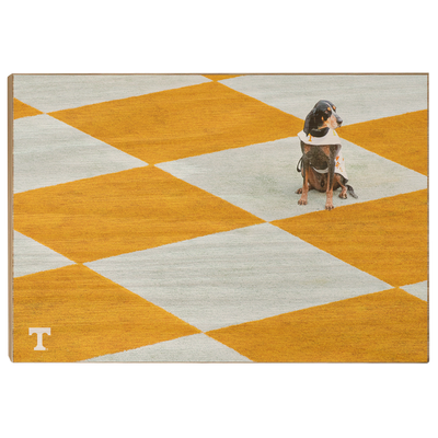 Tennessee Volunteers - Checkerboard Smokey - College Wall Art #Wood