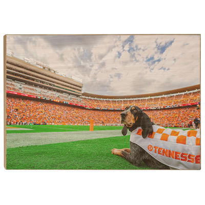 Tennessee Volunteers - Smokey's Tennessee - College Wall Art #Wood