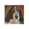 Tennessee Volunteers - TN Smokey Vols - College Wall Art #Wood