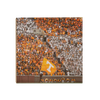 Tennessee Volunteers - Tradition - College Wall Art #Wood
