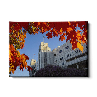 Virginia Tech Hokies - Lane Autumn Leaves - College Wall Art #Canvas