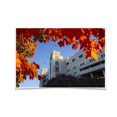 Virginia Tech Hokies - Lane Autumn Leaves - College Wall Art #Poster
