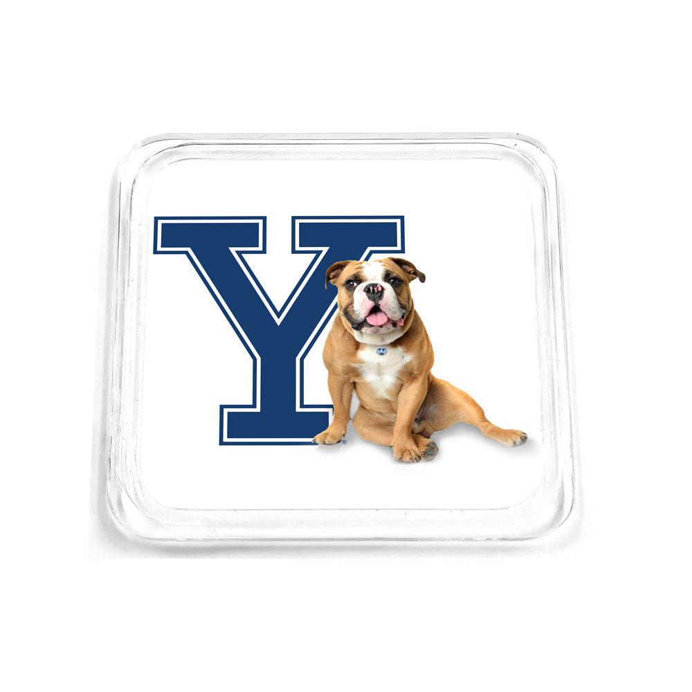 Yale Bulldogs - Yale Handsome Dan Drink Coaster