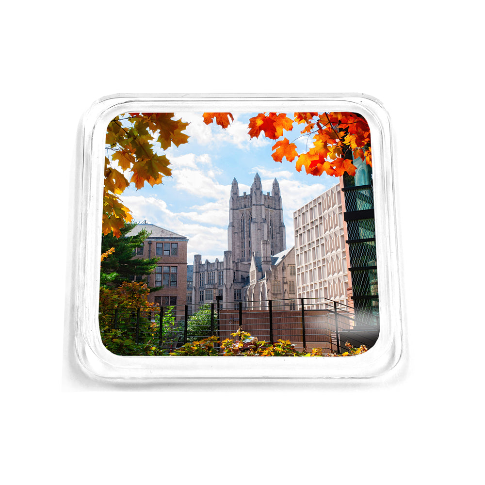 Yale Bulldogs - Sheffield-Sterling-Strathcona Hall Fall Drink Coaster