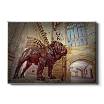Yale Bulldogs - Yale's Hansome Dan - College Wall Art #Canvas