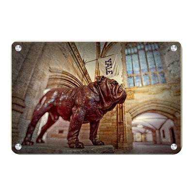 Yale Bulldogs - Yale's Hansome Dan - College Wall Art #Metal