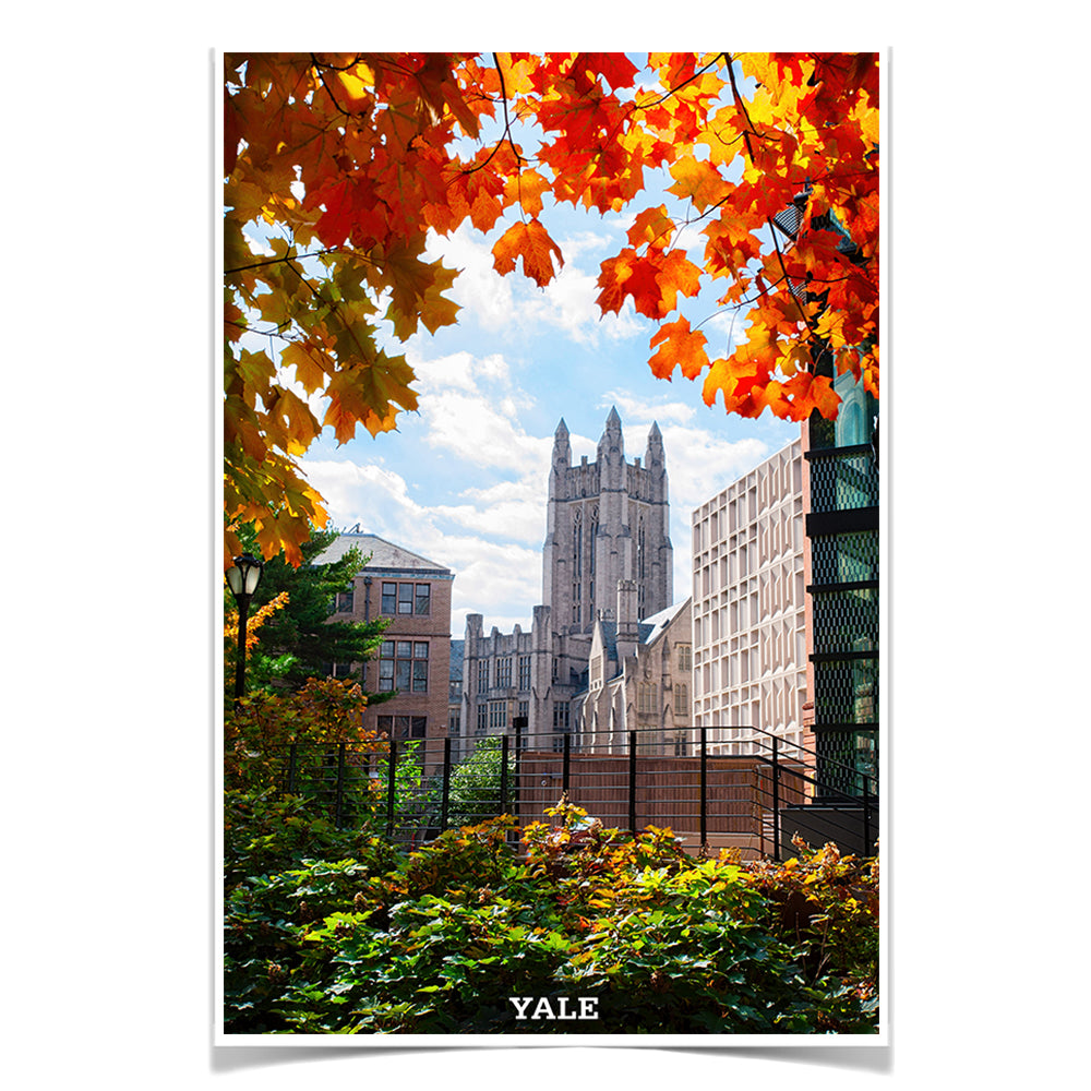 Yale Bulldogs - Sheffield-Sterling-Strathcona Hall Fall #Canvas