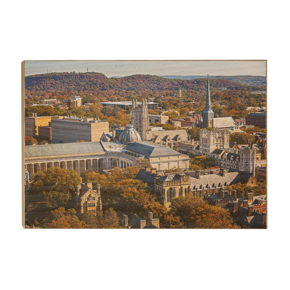 Yale Bulldogs - Yale Autumn Aerial #Canvas