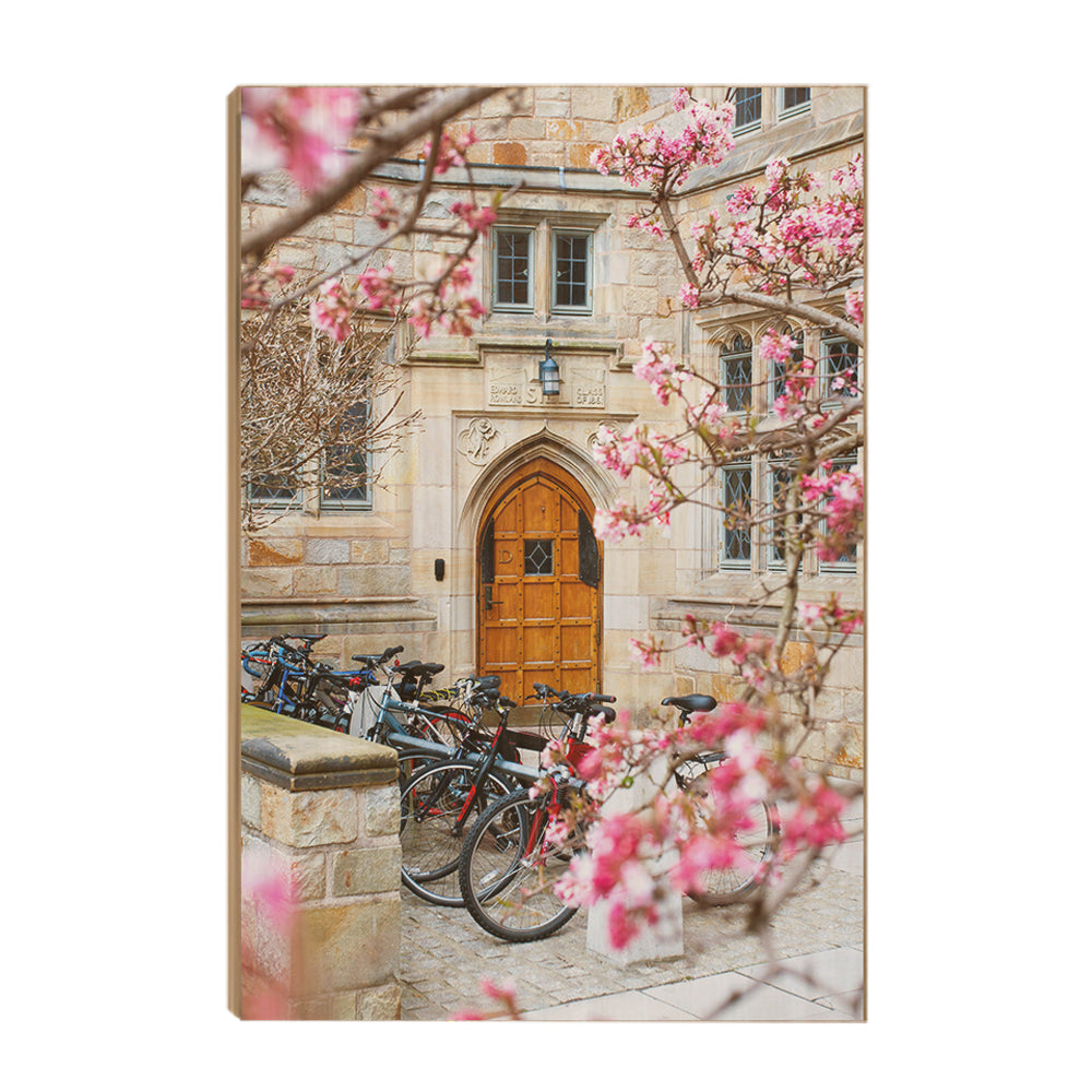 Yale Bulldogs - Saybrook College Spring Flowers #Canvas