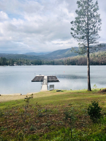 Bass Lake-Camp-California