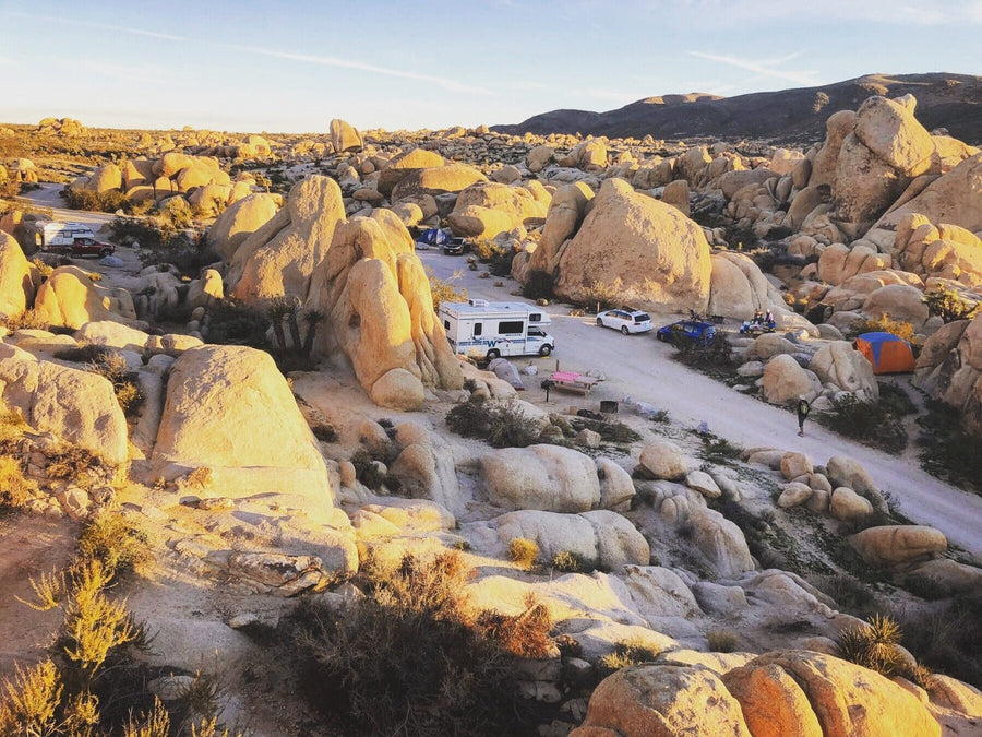Morning at the Joshua Tree Park campground