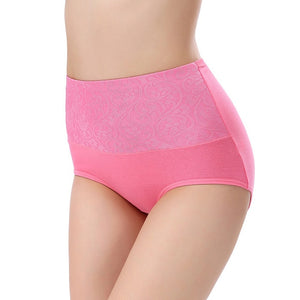 Shaping Plus Size High Waist Panties - Lynne & Trends