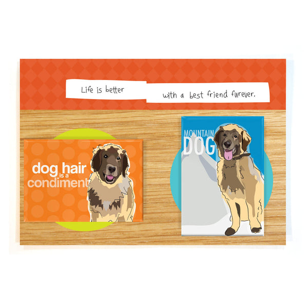 Leonberger Dog Magnet Four Pack