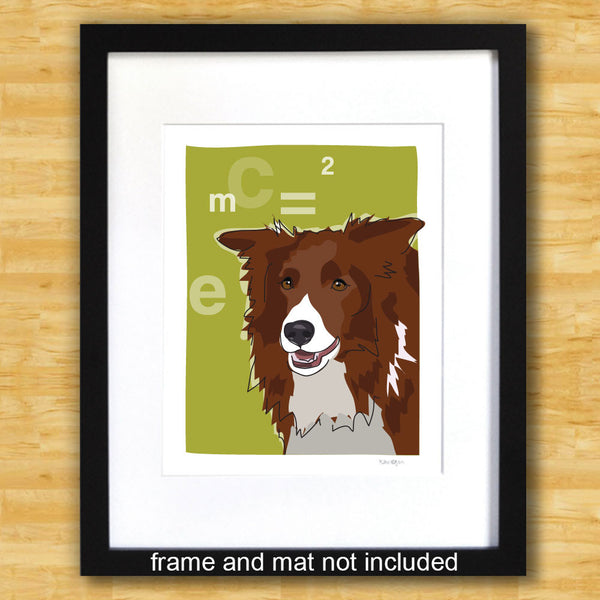 Border Collie Art Print - Einstein - Red Brown Border Collie