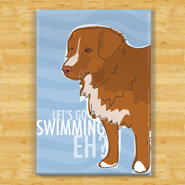 Nova Scotia Duck Toller Art