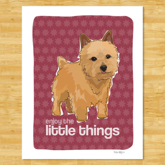 Norwich Terrier Art Print