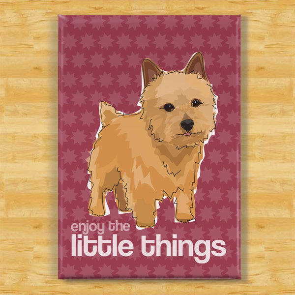 Norwich Terrier Art