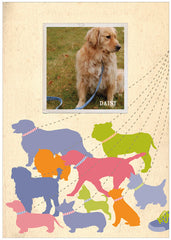 """Walk the Dog"" Dog Postcard - Preppy"