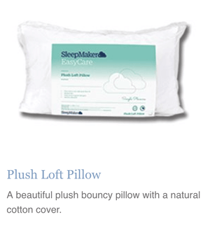 Plush Loft Pillow - Oak Furniture Store & Sofas
