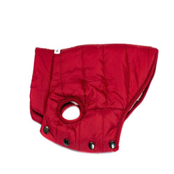 Colorful Windbreaker Light Weight Red - DogCrush Boutique