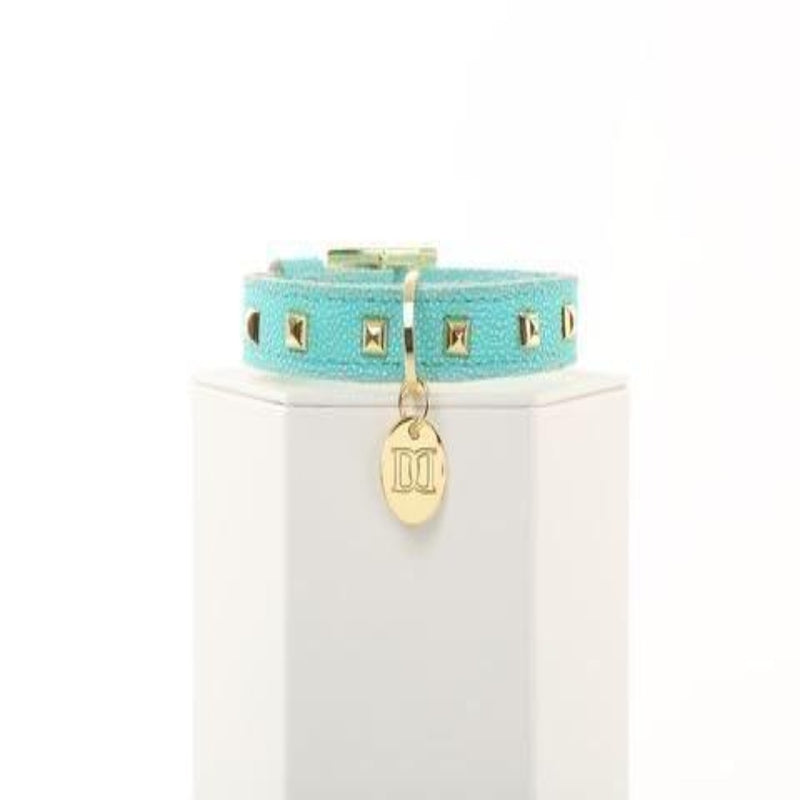 Stylish Turquoise and Gold Studded Pet Collar by Devious Dog - DogCrush Boutique