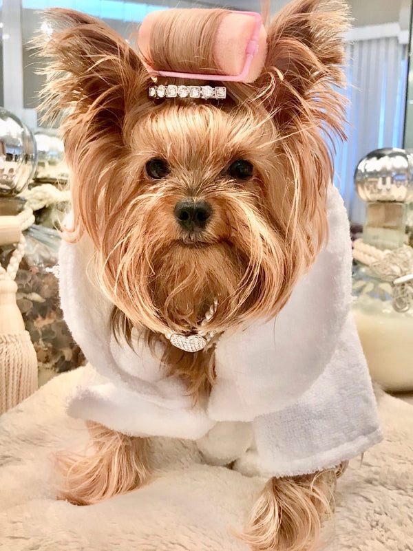 White Terrycloth Spa Bathrobe with Silver Tiara for Pampered Pets - DogCrush Boutique