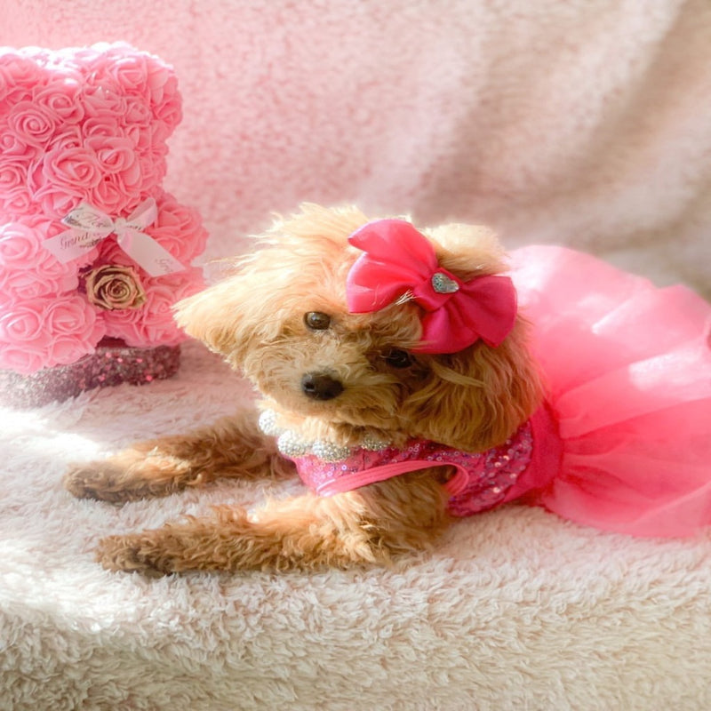 Hot Pink Sequins and Tulle Party Dress (NEW) - DogCrush Boutique