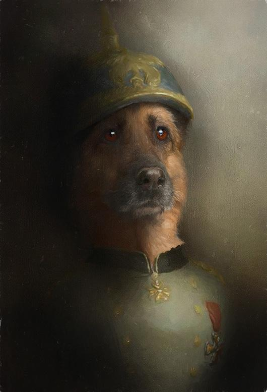 Hans Pet Portrait at Turner & Walker