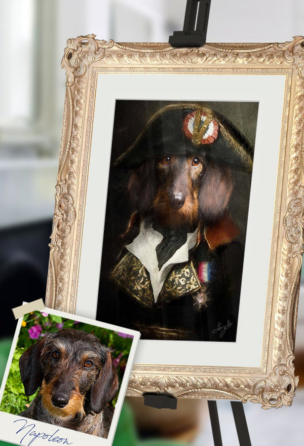 Vive Le France Pet Portrait at Turner & Walker