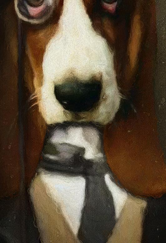 Watson Pet Portrait at Turner & Walker