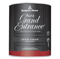 Benjamin Moore Aura Grand Entrance Satin (147)