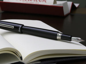 Esterbrook Estie Black Oversize Fountain Pen - Silver Trim - Pen Show Sample